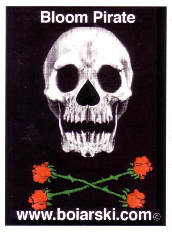 bloom piraTE
